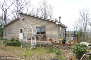 1000 Potomac Overlook Drive, Levels, WV 25431 (#HS9918228) :: LoCoMusings