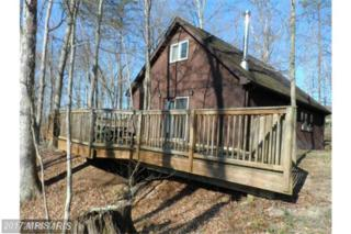 14 Creekside, Capon Bridge, WV 26711 (#HS9923544) :: Pearson Smith Realty