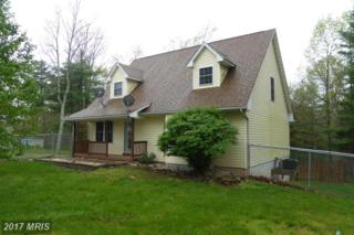 203 Hickory Lane, Augusta, WV 26704 (#HS9923787) :: Pearson Smith Realty