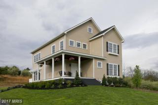 355 Paso Fino Drive, Augusta, WV 26704 (#HS9925377) :: A-K Real Estate
