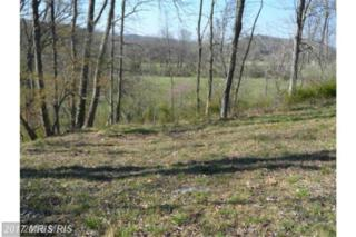 11 Creekside, Capon Bridge, WV 26711 (#HS9925400) :: Pearson Smith Realty