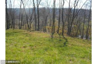 12 Creekside, Capon Bridge, WV 26711 (#HS9925427) :: Pearson Smith Realty