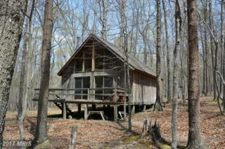 1400-D E DRIVE Warden Lake Drive, Wardensville, WV 26851 (#HS9927282) :: Pearson Smith Realty