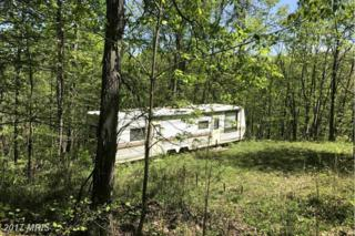 Core Road, Romney, WV 26757 (#HS9935514) :: Pearson Smith Realty