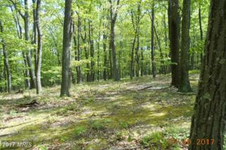 Rock Pile Rd/Grouse Knob Road S, Shanks, WV 26761 (#HS9942677) :: Pearson Smith Realty