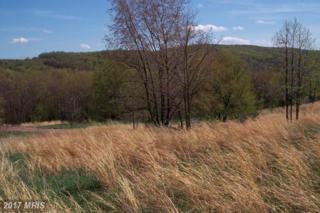 Apple Drive, Romney, WV 26757 (#HS9943036) :: Pearson Smith Realty