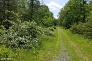 4 Red Fox Road, Romney, WV 26757 (#HS9943055) :: Pearson Smith Realty