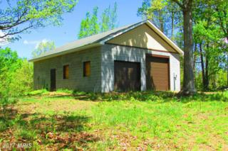 100 RAYS COURT, Shanks, WV 26761 (#HS9943710) :: Pearson Smith Realty