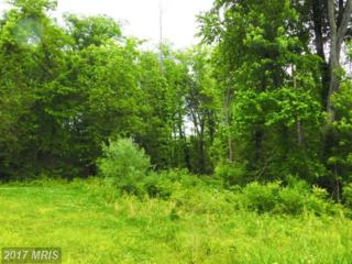 Rt 1 Green Spring, Green Spring, WV 26722 (#HS9956567) :: Pearson Smith Realty
