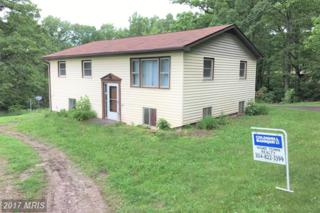 43 Sand Hill Rd/Fox Squirrel Drive, Romney, WV 26757 (#HS9960293) :: Pearson Smith Realty