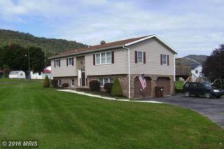 11609 Auxiliary Drive, Shade Gap, PA 17255 (#HU9784945) :: Pearson Smith Realty