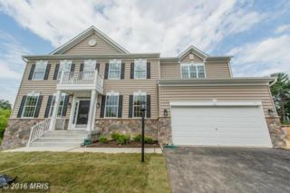 8308 Old Montgomery Road, Columbia, MD 21045 (#HW9795748) :: Pearson Smith Realty