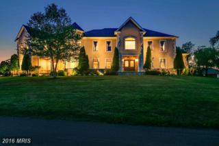 830 Morgan Station Road, Woodbine, MD 21797 (#HW9816639) :: Pearson Smith Realty