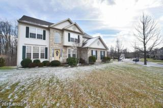 6501 Cashel Court, Clarksville, MD 21029 (#HW9833963) :: Pearson Smith Realty