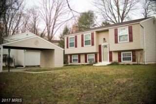 6581 Robin Song, Columbia, MD 21045 (#HW9834995) :: Pearson Smith Realty