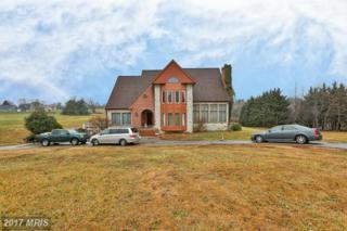 2980 Hobbs Road, Glenwood, MD 21738 (#HW9838857) :: Pearson Smith Realty