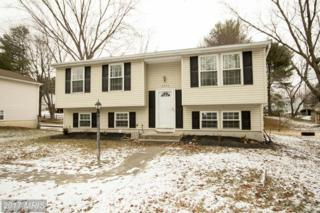 6756 Flapjack Lane, Columbia, MD 21046 (#HW9840268) :: Pearson Smith Realty