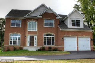 11714 Trotter Point Court, Clarksville, MD 21029 (#HW9840467) :: LoCoMusings