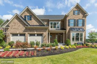 2446 Valley View Way, Ellicott City, MD 21042 (#HW9843916) :: Pearson Smith Realty
