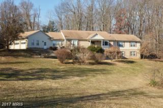 4015 Roxmill Court, Glenwood, MD 21738 (#HW9844394) :: Pearson Smith Realty