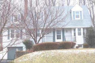 12072 Frederick Road, Ellicott City, MD 21042 (#HW9848398) :: Pearson Smith Realty