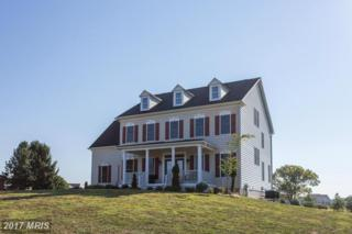 14671 Triadelphia Road, Glenelg, MD 21737 (#HW9851661) :: LoCoMusings