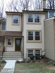 7257 Swan Point Way 16-8, Columbia, MD 21045 (#HW9852329) :: Pearson Smith Realty
