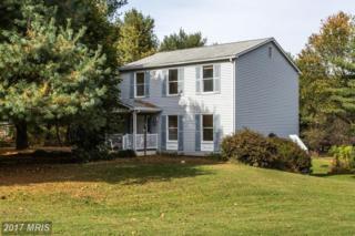 14576 Macclintock Drive, Glenwood, MD 21738 (#HW9854381) :: Pearson Smith Realty