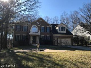 6312 Angel Rose Court, Columbia, MD 21044 (#HW9861110) :: Pearson Smith Realty