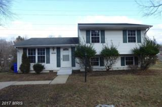 9246 Moonfire Place, Columbia, MD 21045 (#HW9875736) :: LoCoMusings