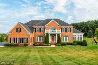 12861 Macbeth Farm Lane, Clarksville, MD 21029 (#HW9876572) :: LoCoMusings