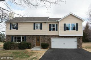 17034 Hardy Road, Mount Airy, MD 21771 (#HW9876963) :: Pearson Smith Realty