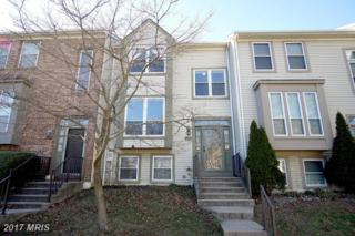 8214 Tall Trees Court, Ellicott City, MD 21043 (#HW9881495) :: LoCoMusings