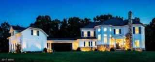 14301 Frederick Road, Cooksville, MD 21723 (#HW9884470) :: LoCoMusings