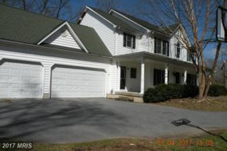 1224 Haleys Court, Mount Airy, MD 21771 (#HW9885514) :: LoCoMusings