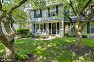 7161 Stag Horn Path, Columbia, MD 21045 (#HW9885726) :: Pearson Smith Realty