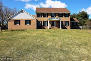 5406 Jamesway Court, Clarksville, MD 21029 (#HW9886512) :: LoCoMusings