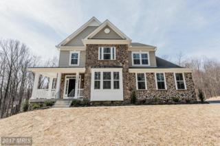 12504 Triadelphia Road, Ellicott City, MD 21042 (#HW9888466) :: LoCoMusings