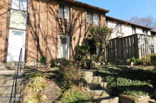 6529 Pressed Gentian, Columbia, MD 21045 (#HW9888893) :: Pearson Smith Realty