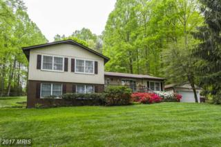 13595 Nichols Drive, Clarksville, MD 21029 (#HW9897373) :: Pearson Smith Realty