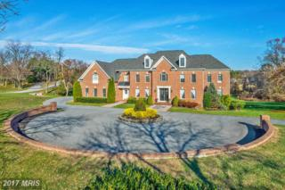 13616 Gilbride Lane, Clarksville, MD 21029 (#HW9901079) :: Pearson Smith Realty