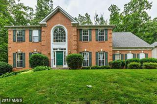 2020 Meadow Tree Court, Cooksville, MD 21723 (#HW9901786) :: Pearson Smith Realty