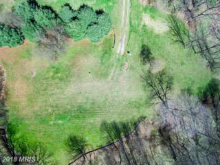 13375 Forsythe Road, Sykesville, MD 21784 (#HW9902620) :: Pearson Smith Realty