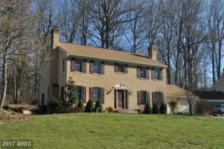 3214 Green Forest Court, Ellicott City, MD 21042 (#HW9905454) :: Pearson Smith Realty