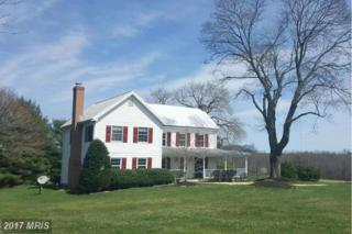 2113 Florence Road, Mount Airy, MD 21771 (#HW9906605) :: Pearson Smith Realty