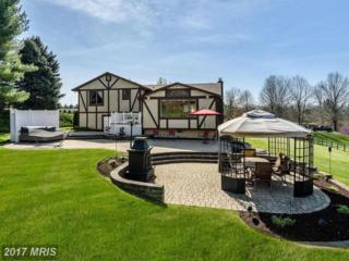 13730 Barberry Way, Sykesville, MD 21784 (#HW9911897) :: LoCoMusings