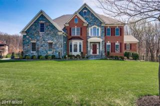 11229 Kinsale Court, Ellicott City, MD 21042 (#HW9917321) :: LoCoMusings