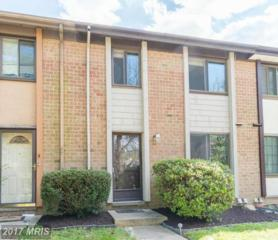 6536 Frietchie Row, Columbia, MD 21045 (#HW9920425) :: LoCoMusings