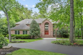 13306 Royden Court, Ellicott City, MD 21042 (#HW9920736) :: Pearson Smith Realty