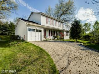9214 Tunemaker Terrace, Columbia, MD 21045 (#HW9920779) :: Pearson Smith Realty